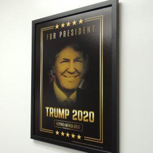 Trump Framed Poster